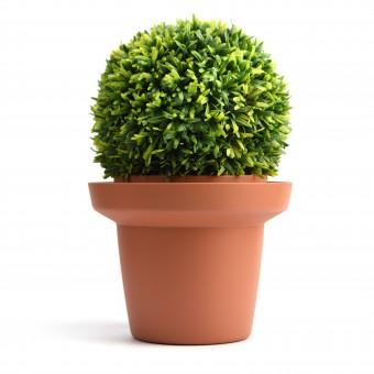 Side Pot