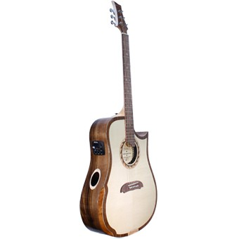 riversong tradition acoustic guitars adjustable acoustic guitar