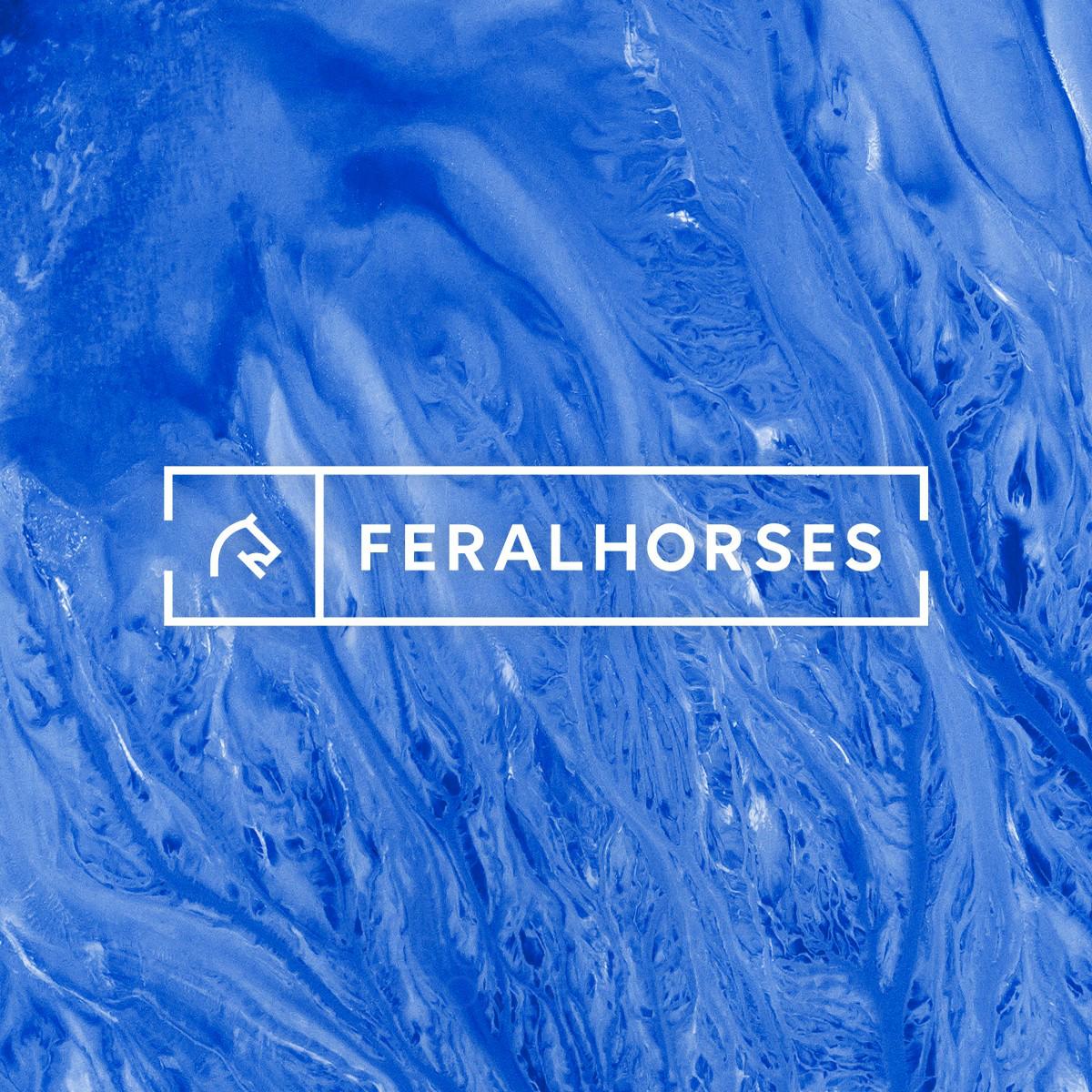 Feral Horses Corporate Identity