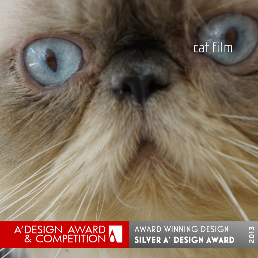 Cat Film to show architecture