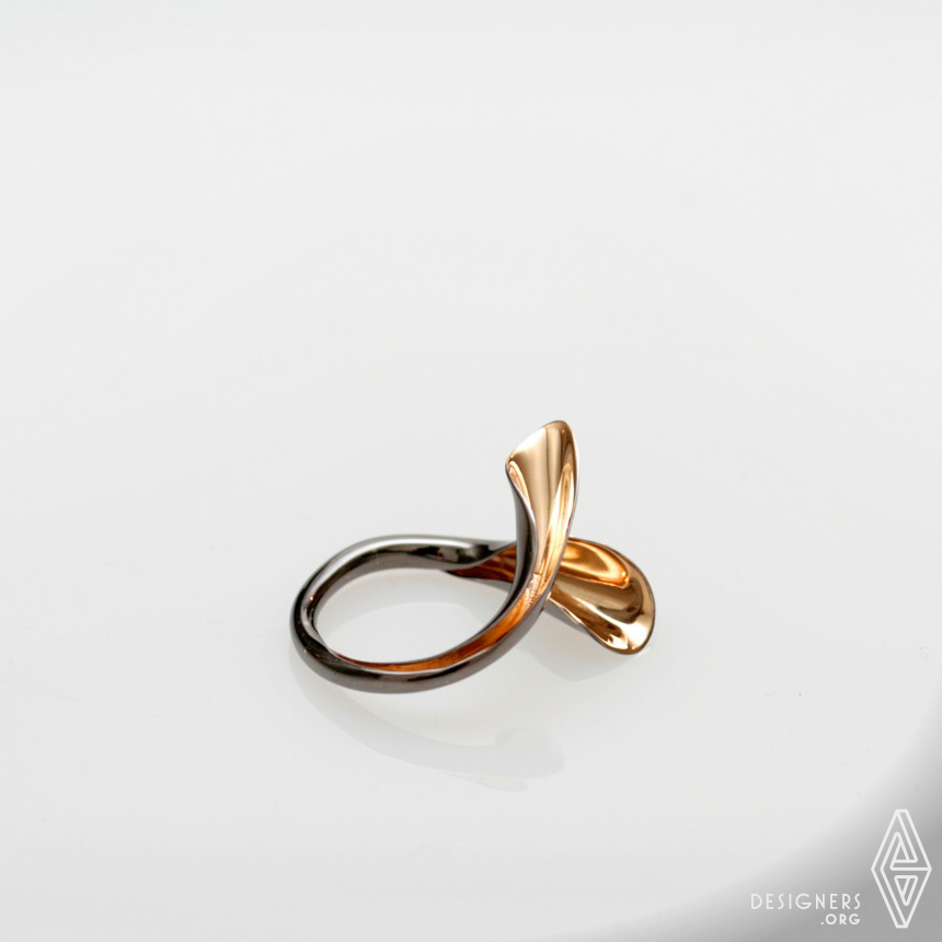 Vivit Collection Earrings and Ring Image