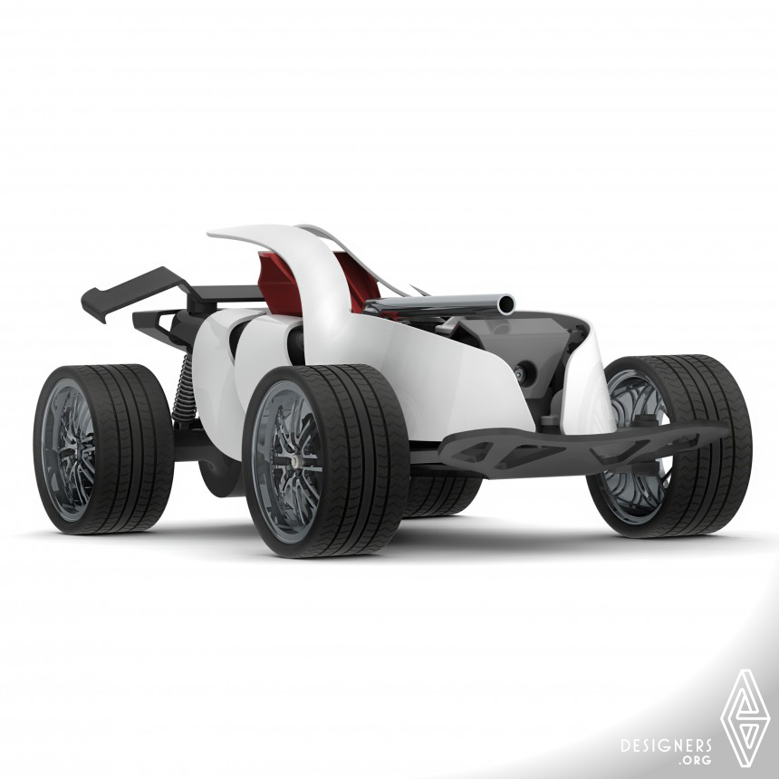 Toybic Personalized RC car
