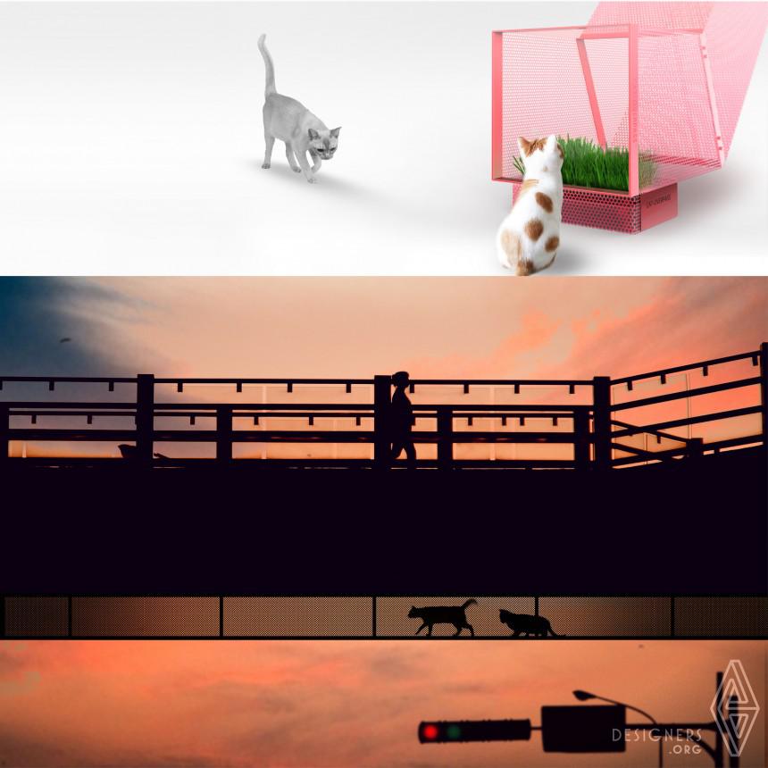 Inspirational Cat-Overpass  Design