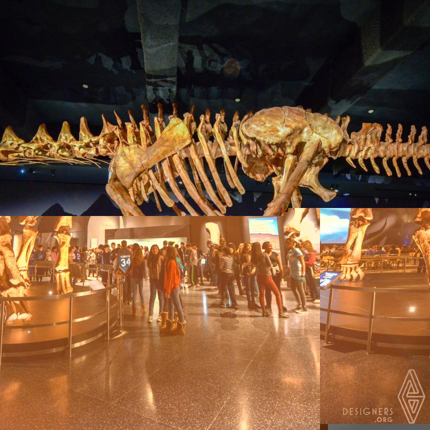 The Titanosaur Permanent Exhibition Image
