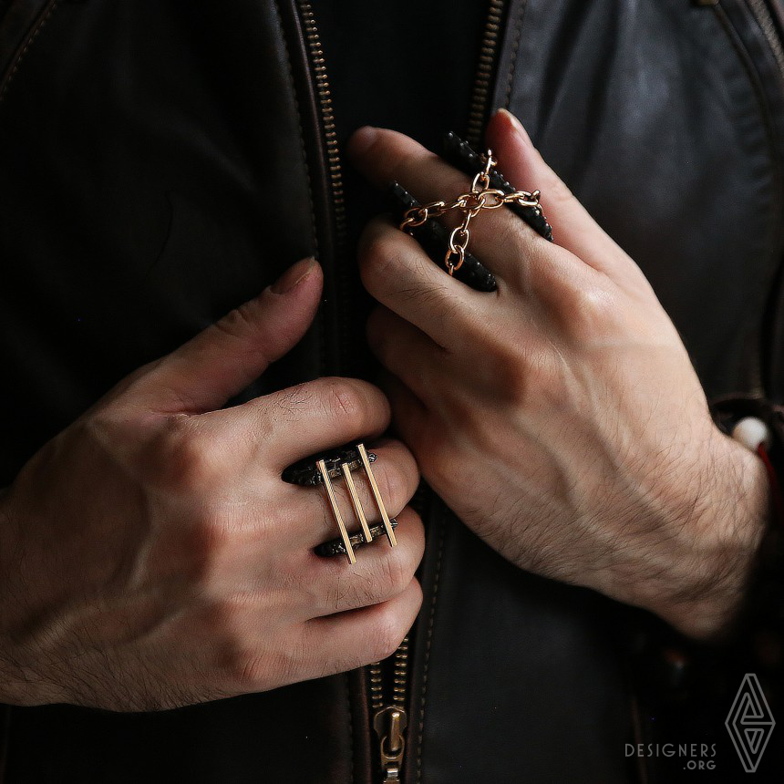 Armour Rings Image