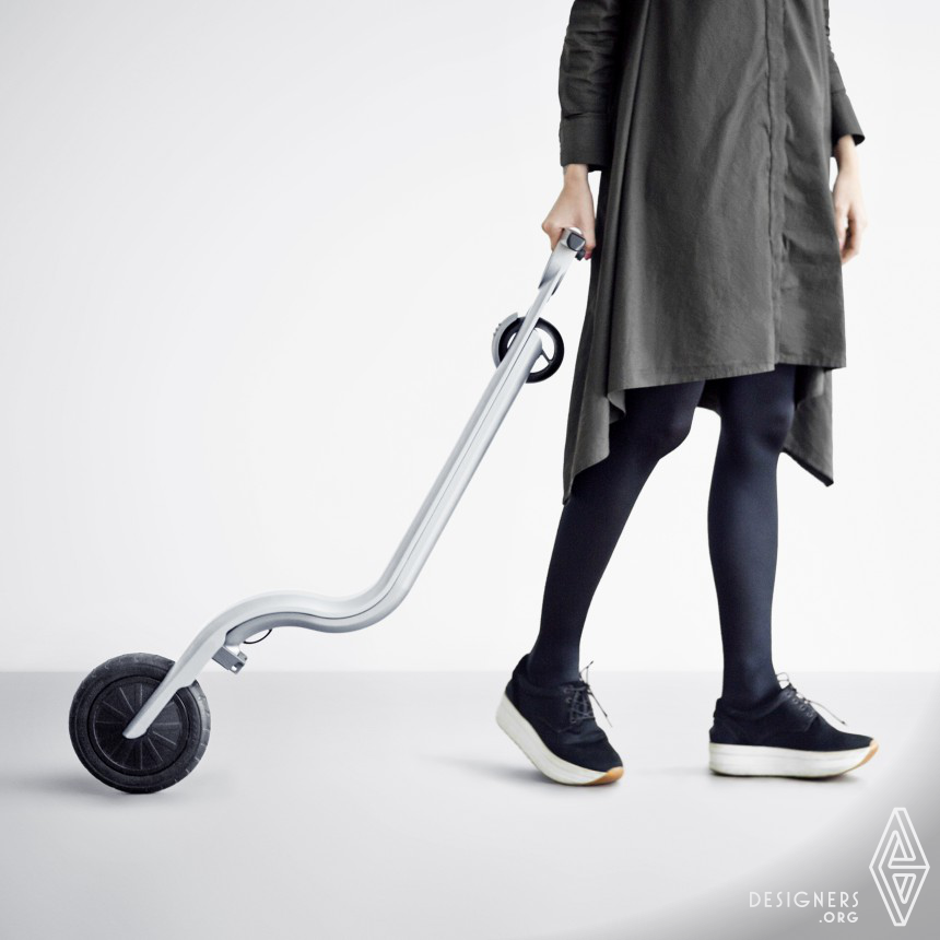 Eagle Electric kick scooter