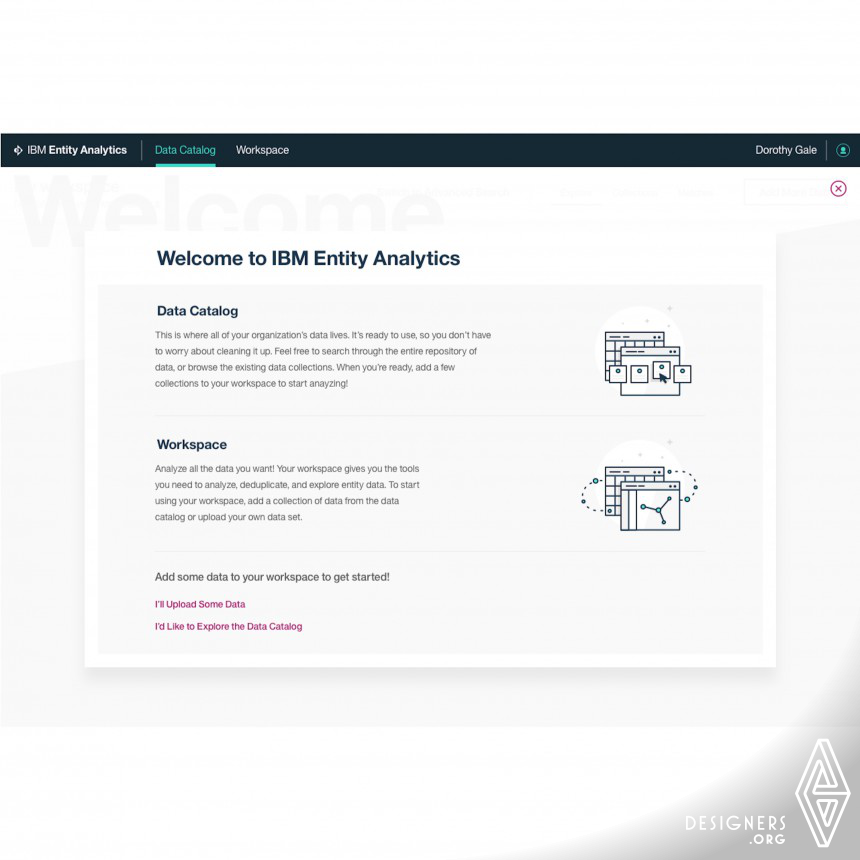 IBM Entity Insight Software Application