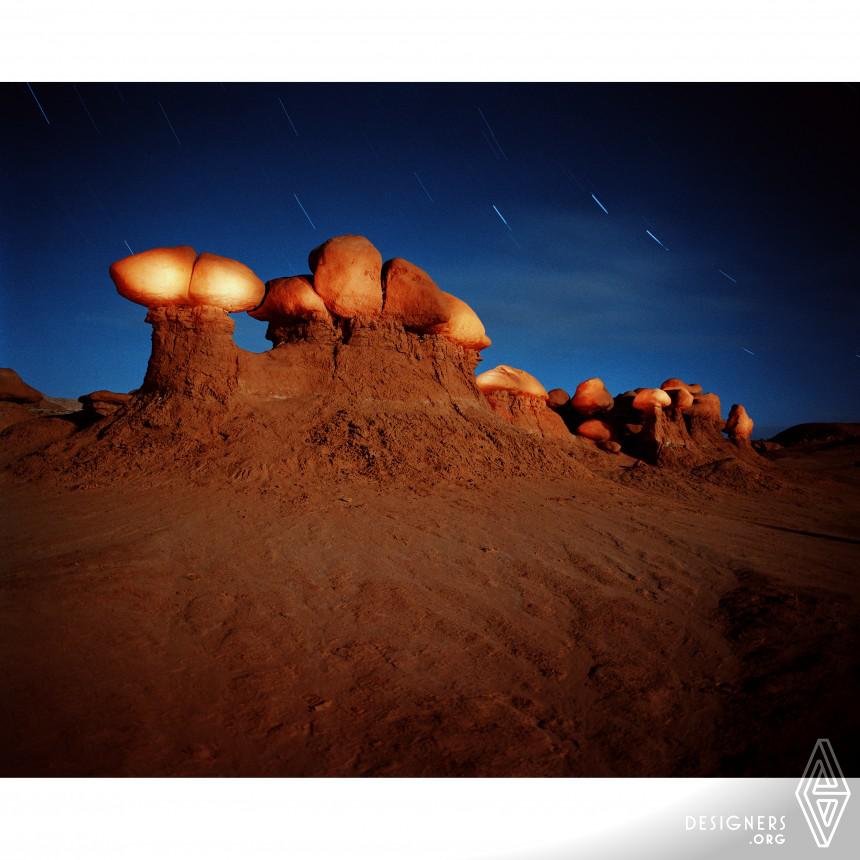 Animism 2 - Natural Architect Photography
