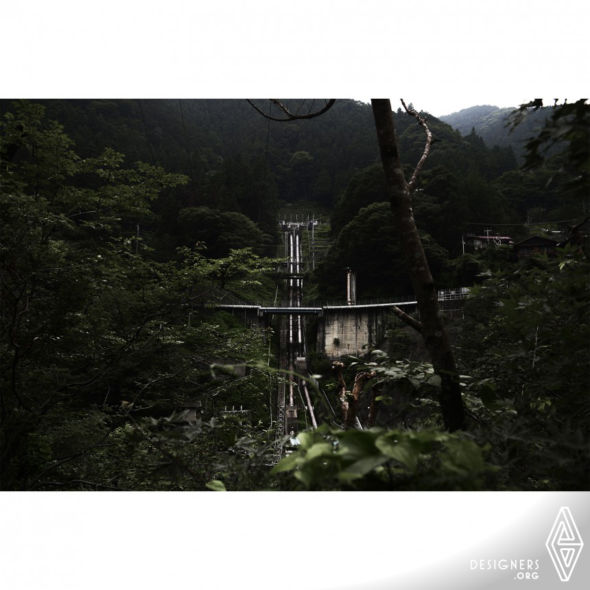 The Japanese Forest Photography Image