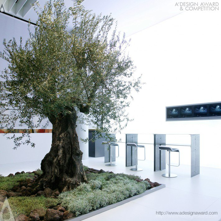 olive-tree-by-nico-ueberholz-1
