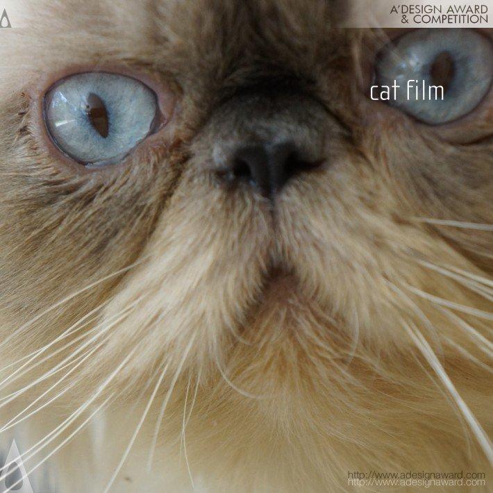 Cat (Film to Show Architecture Design)