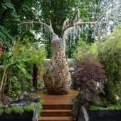 Baobab Garden