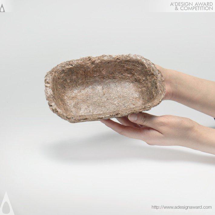 Poc (Biodegradable Food Packaging Design)