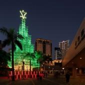 Hong Kong Christmas Tree 2015
