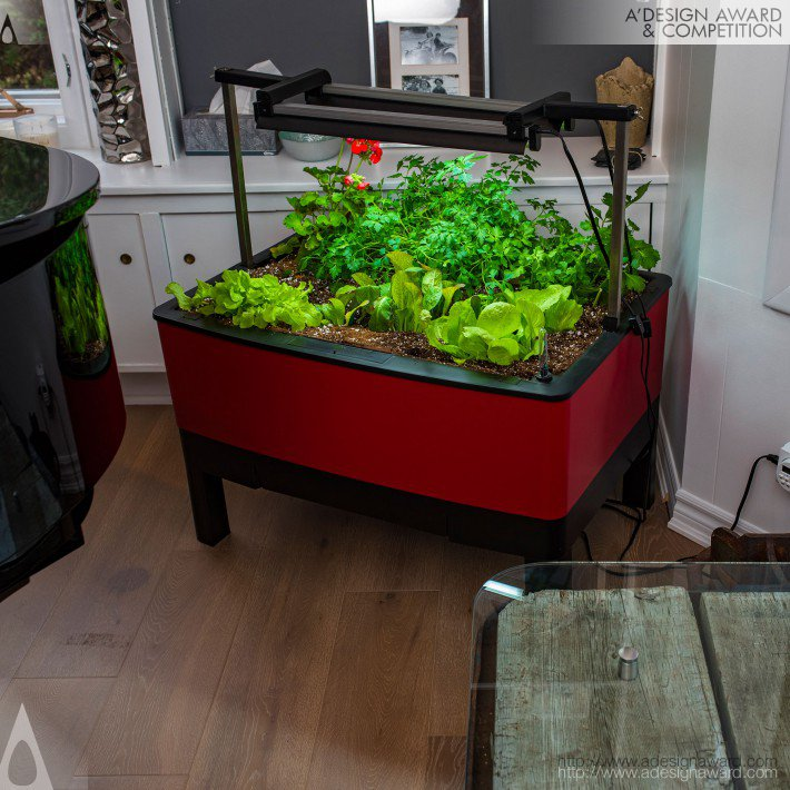 Grow Food Indoors and Outdoors by Eddie DeJong