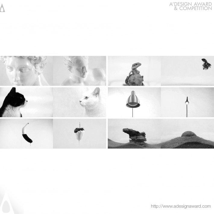 Pun Riddles (Experimental Concept Image Expression Design)
