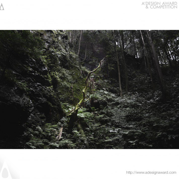 Masaru Eguchi - The Japanese Forest Photography