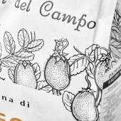 Racconti Del Campo